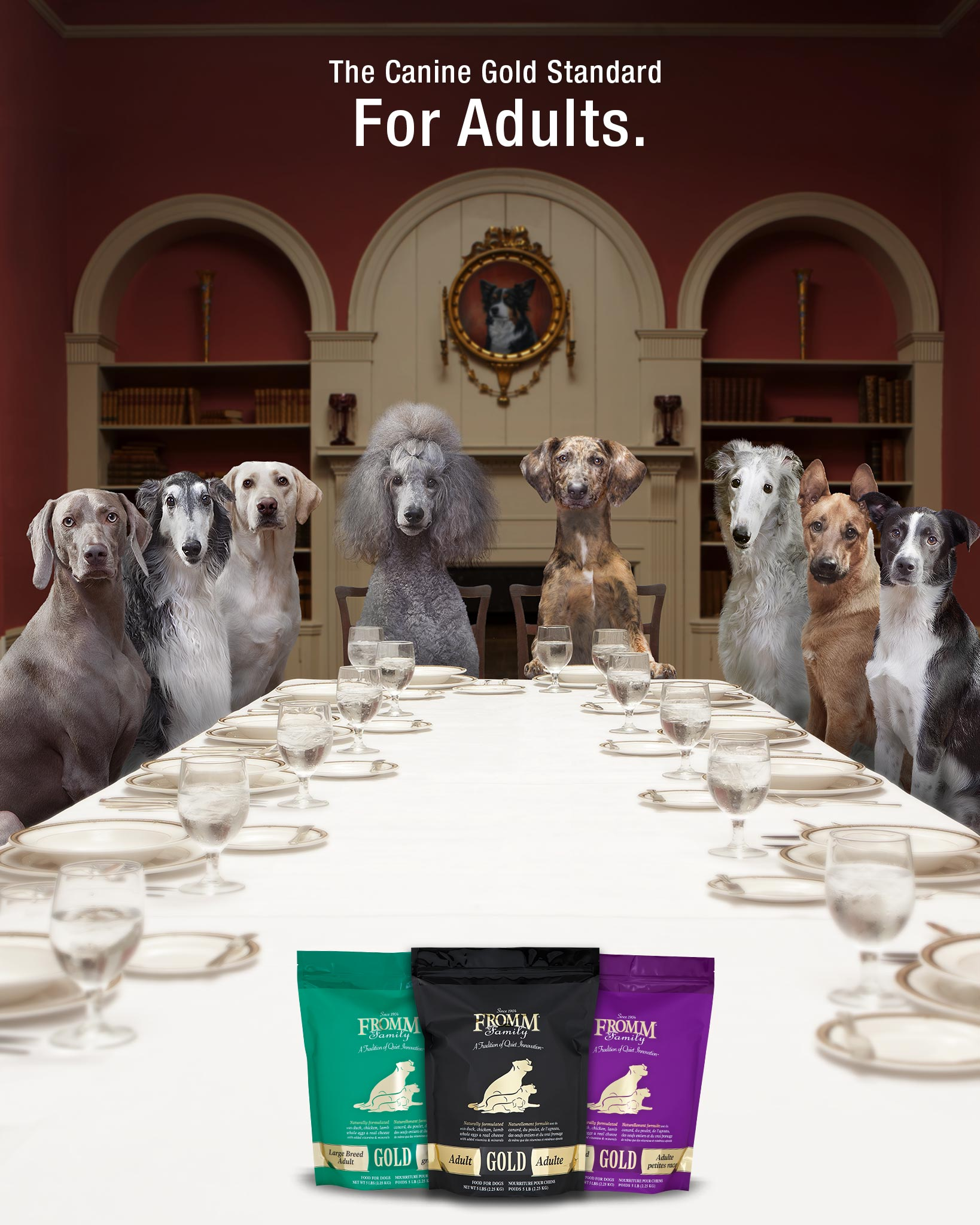 Adult Gold Dog Food - Fromm Family Foods