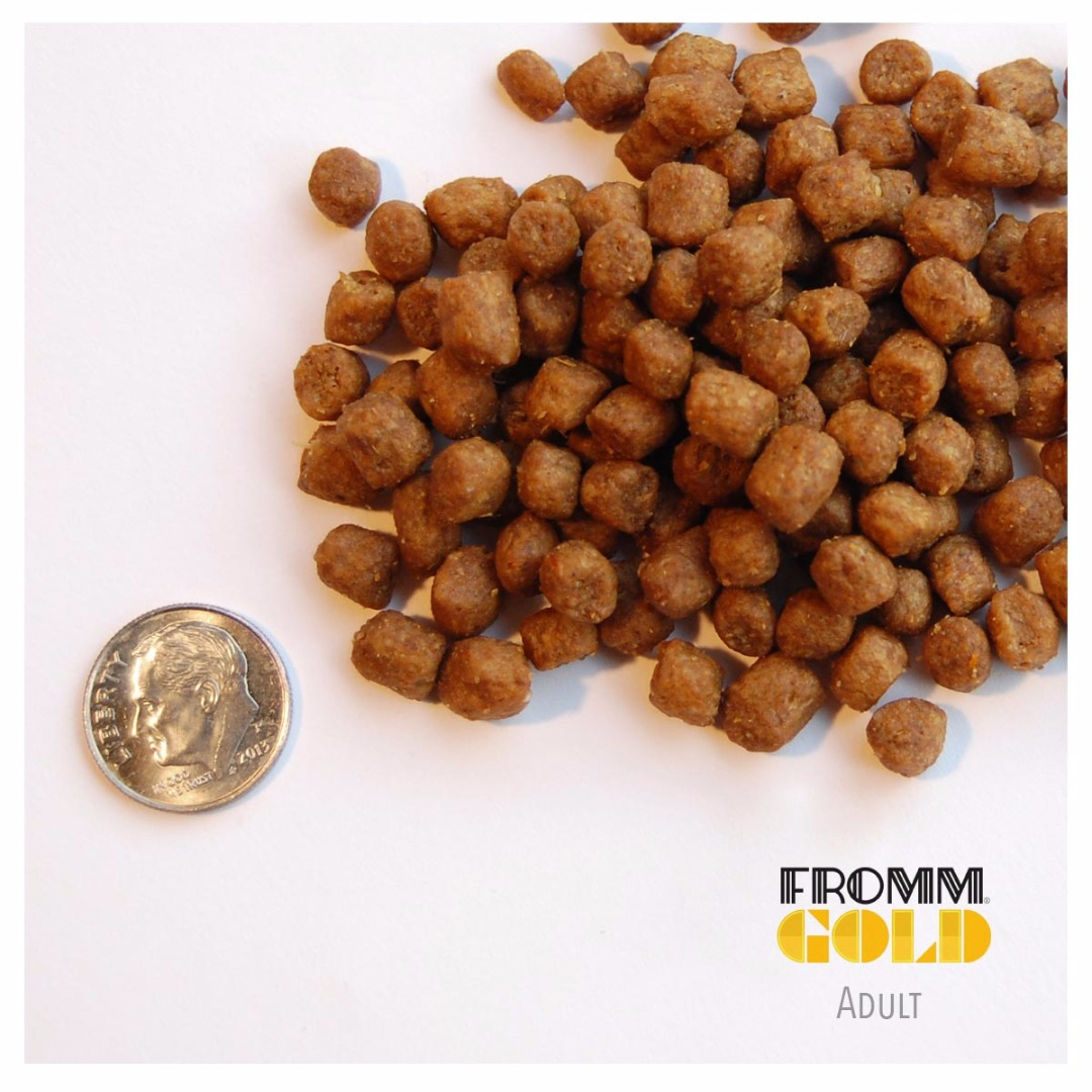 Fromm Family Gold Adult Dog Food