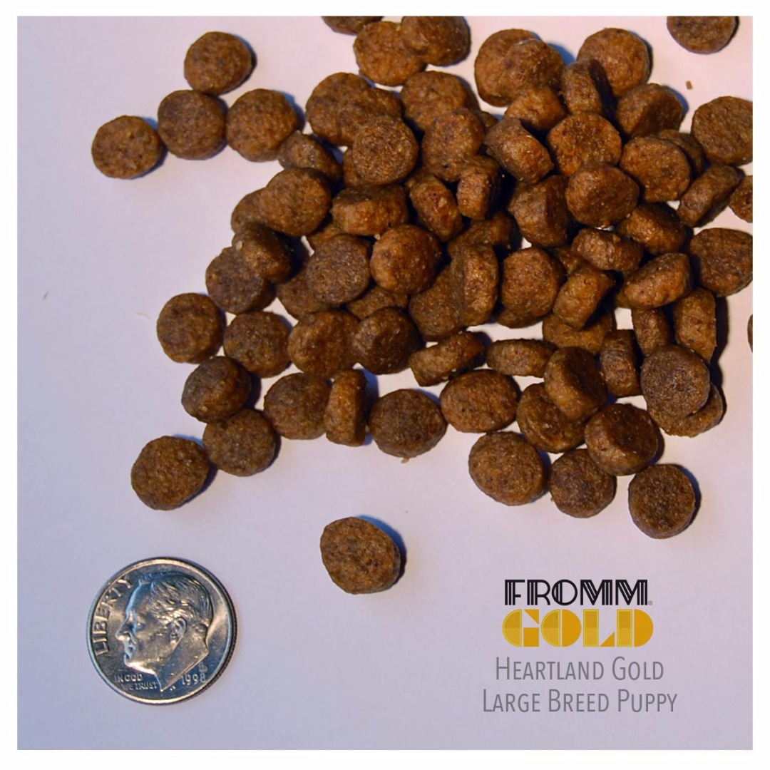 Fromm Heartland Gold Grain Free Large Breed Puppy Dog Food