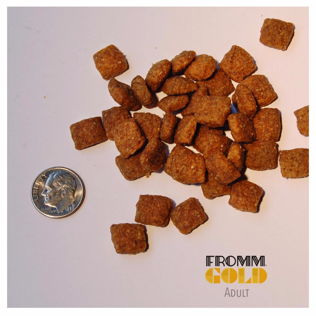 Adult Gold Dog Food Fromm Family Foods